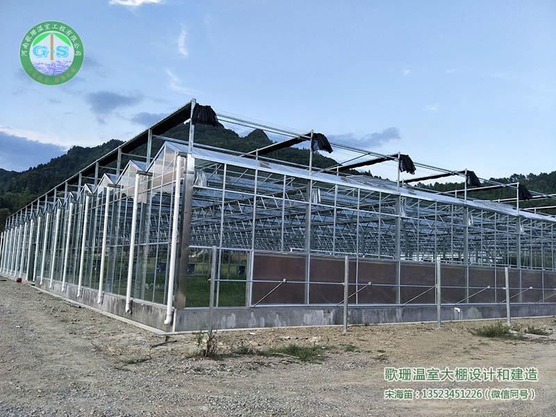 郑州大棚,郑州玻璃温室,郑州玻璃温室公司,